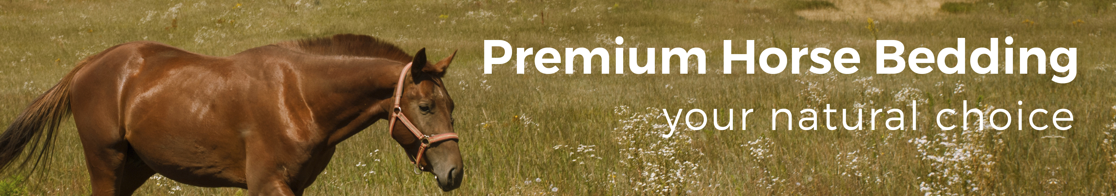 Premium Horse Bedding - LacWood Premium Wood Pellets